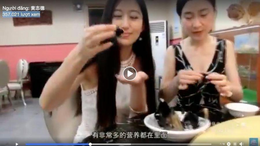 Rợn gáy với clip ăn thịt dơi của người Trung Quốc