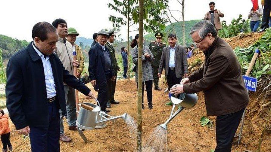 Lễ phát động Tết trồng cây tại Tuyên Quang
