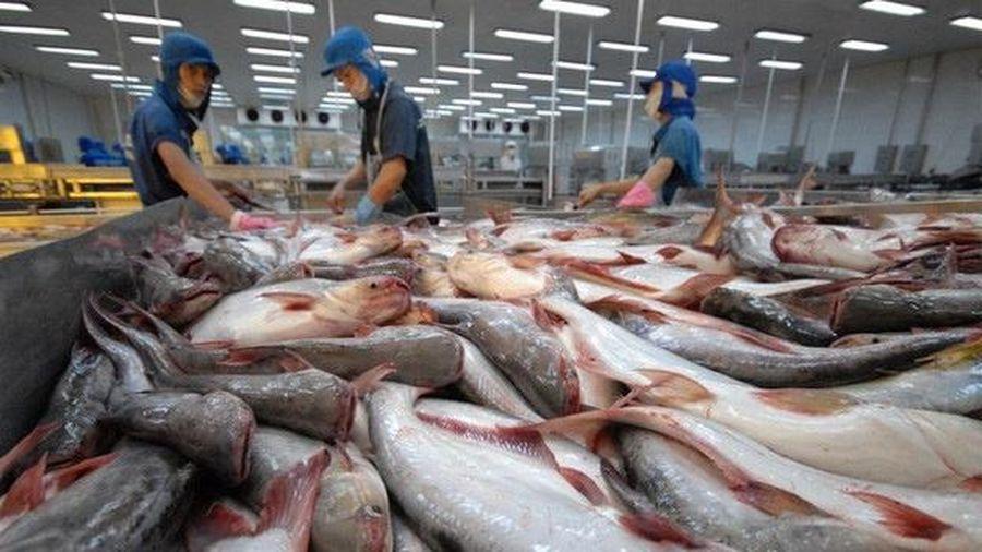 Thủy sản Hùng Vương đặt mục tiêu lãi 350 tỷ
