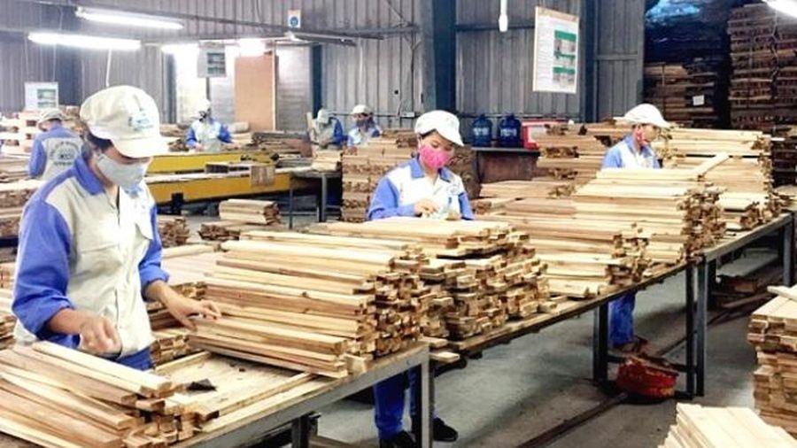 Quốc gia nào đang đầu tư nhiều nhất vào ngành gỗ của Việt Nam?