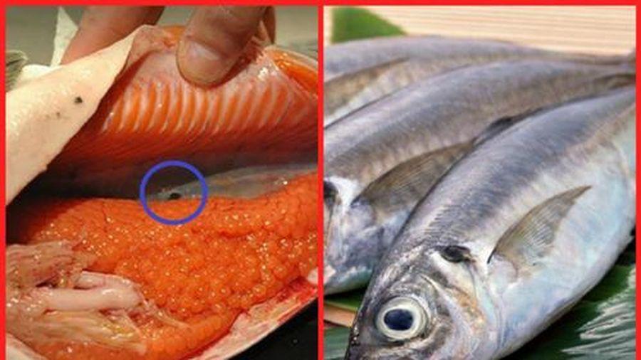 4 bộ phận cực 'độc' của cá chớ dại mà ăn vào kẻo 'mua' thêm bệnh vào người
