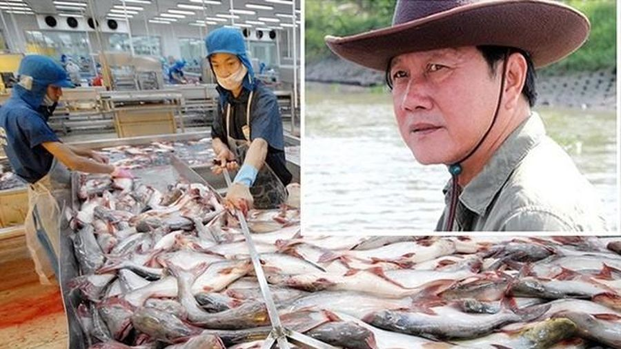 Thủy sản Hùng Vương: Gặp khó vì dịch Covid-19, phát hành 20 triệu cổ phiếu cho tập đoàn của tỷ phú Trần Bá Dương