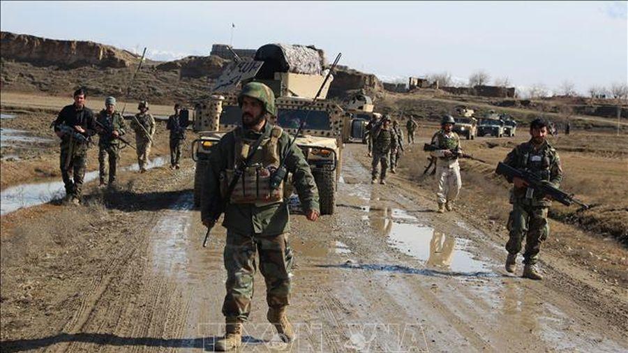 Afghanistan cử phái đoàn tiếp xúc với Taliban