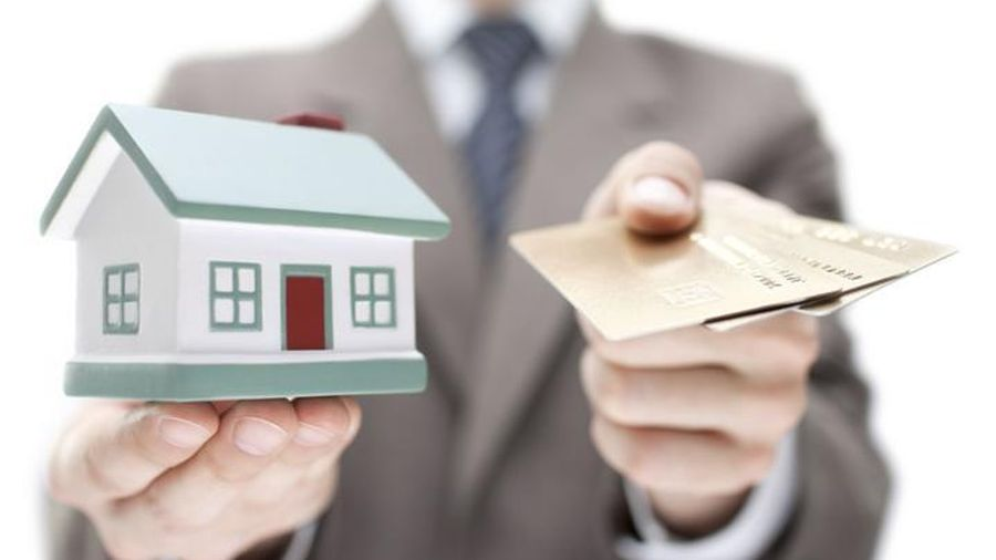 Năm Bảy Bảy (NBB) sắp chốt danh sách cổ đông nhận cổ tức bằng tiền tỷ lệ 25%