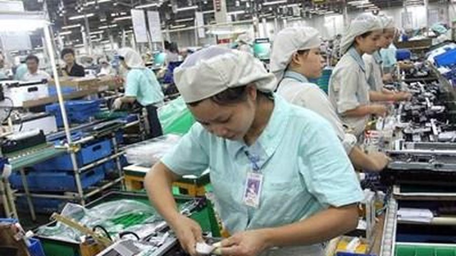 Đài Loan ngừng tiếp nhận lao động nước ngoài từ ngày 19/3