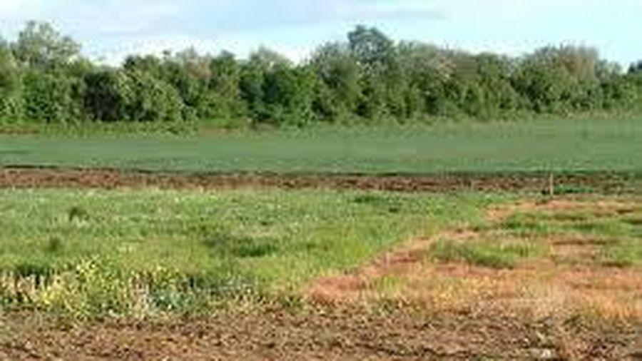 Chuyển mục đích sử dụng đất tại tỉnh Thái Nguyên