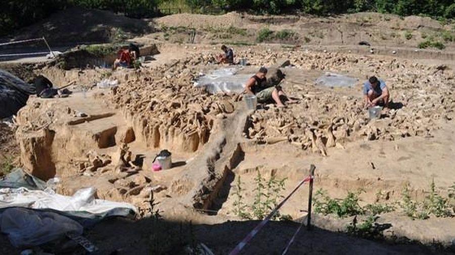 Lạnh người với kiến trúc 20.000 tuổi xây bằng hài cốt 'quái thú' tuyệt chủng
