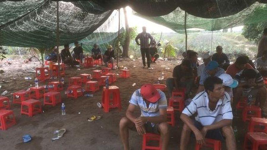 Cảnh sát ở Tiền Giang lại nổ súng phá trường gà, bắt giữ 54 đối tượng