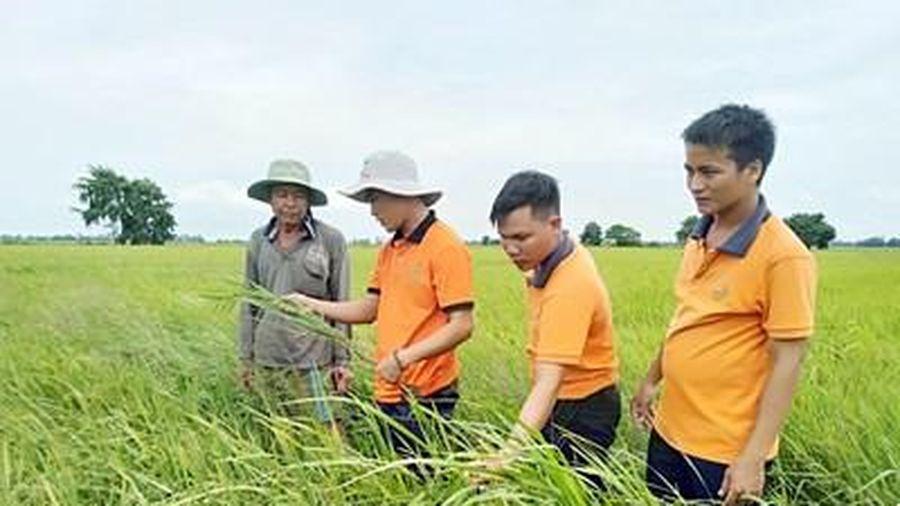 Hành trình 'thay máu' cho nông dân
