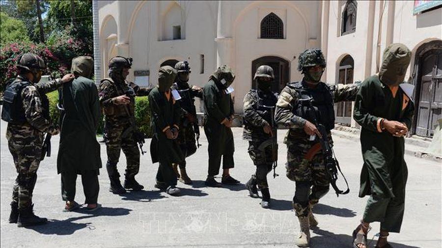 Bom ven đường phát nổ, một thủ lĩnh Taliban cùng vệ sĩ thiệt mạng