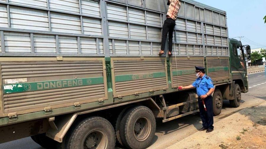 Hàng loạt xe quá tải Bình Định,Quảng Ngãi 'sa lưới' sau chỉ đạo của Bộ GTVT