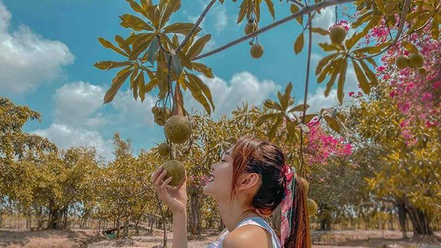 Khu vườn rộng 20.000m2 của ca sĩ Minh Hằng tại Đồng Nai