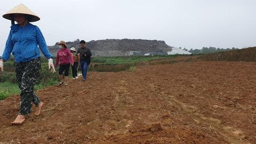 Dân bỏ ruộng vì ảnh hưởng của nhà máy chế biến rác
