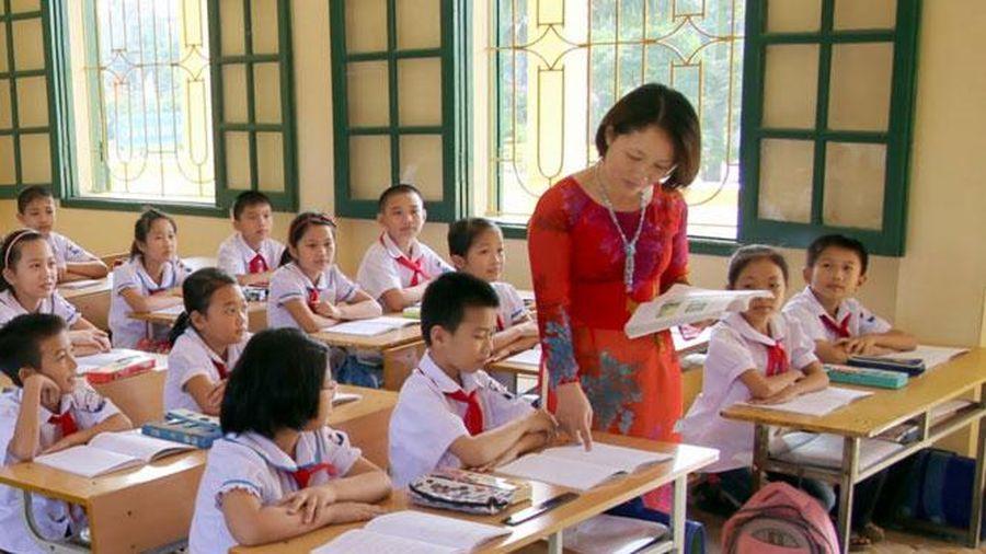 Dự kiến không bố trí giảng dạy đối với giáo viên không đạt chuẩn