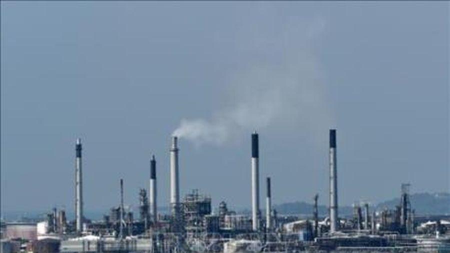 Góc nhìn toàn cảnh về tương lai ngành dầu mỏ (Phần 2)