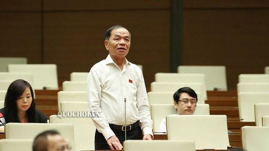 ĐB Lê Thanh Vân: Đại biểu không chuyên nghiệp QH khó đảm bảo được thực chất, thực quyền