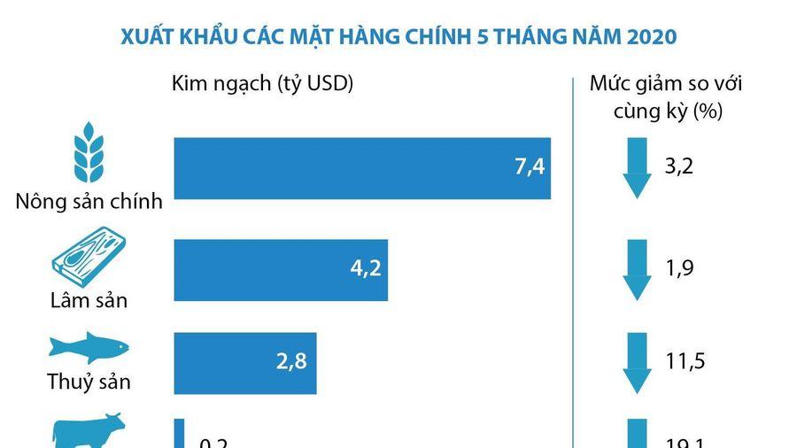 5 tháng, nông-lâm-thủy sản xuất siêu gần 3,3 tỷ USD