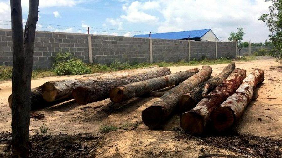 IaPa - Gia Lai: Phát hiện nhiều lóng gỗ lậu vô chủ