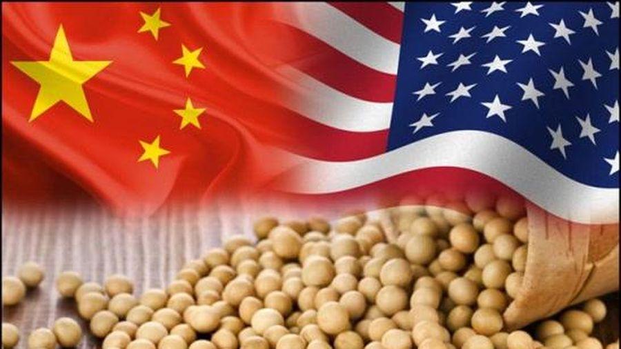 Căng thẳng đỉnh điểm với Mỹ, Trung Quốc ngừng nhập khẩu một số hàng nông sản