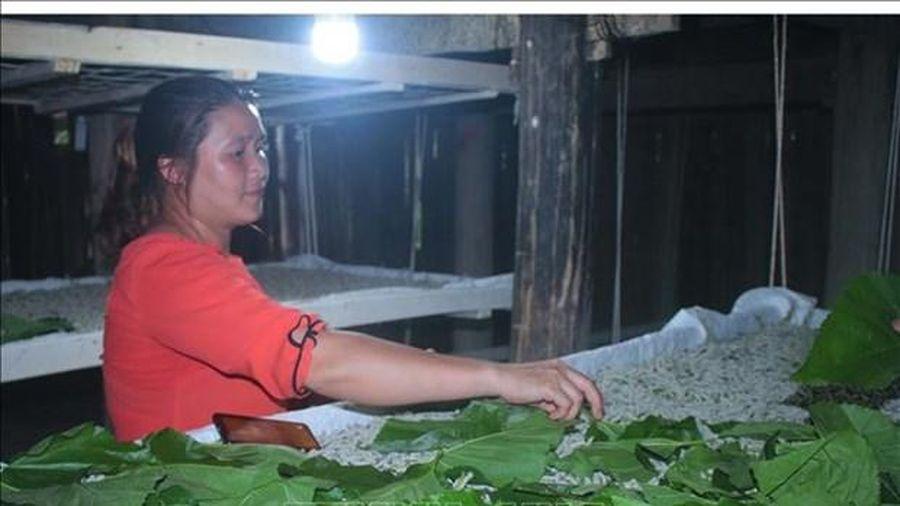 Đổi thay từ trồng dâu nuôi tằm ở Cao Bằng