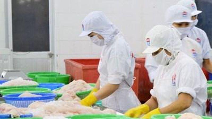 Bến Tre: Chế biến dừa và thủy sản là hai ngành công nghiệp chủ lực
