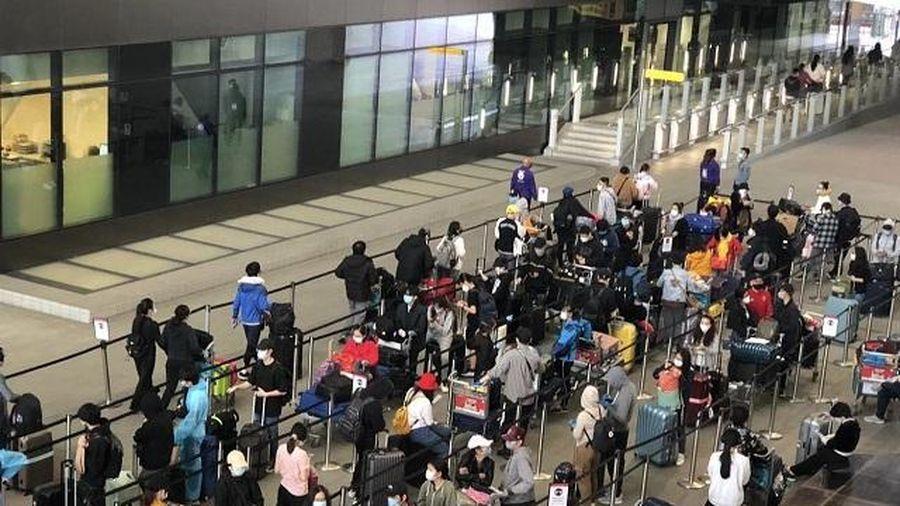 Đưa gần 340 công dân từ Anh về sân bay Tân Sơn Nhất
