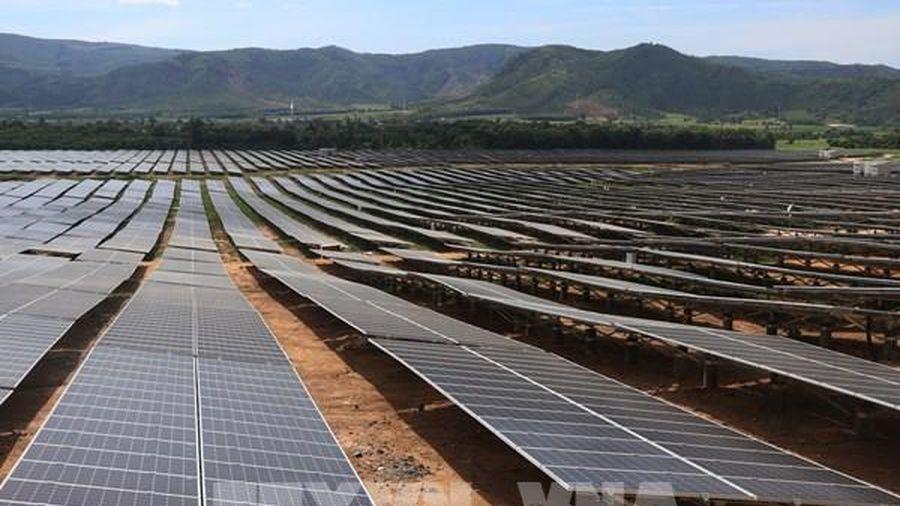 Dự án Nhà máy điện mặt trời Mỹ Hiệp được tiếp tục đầu tư