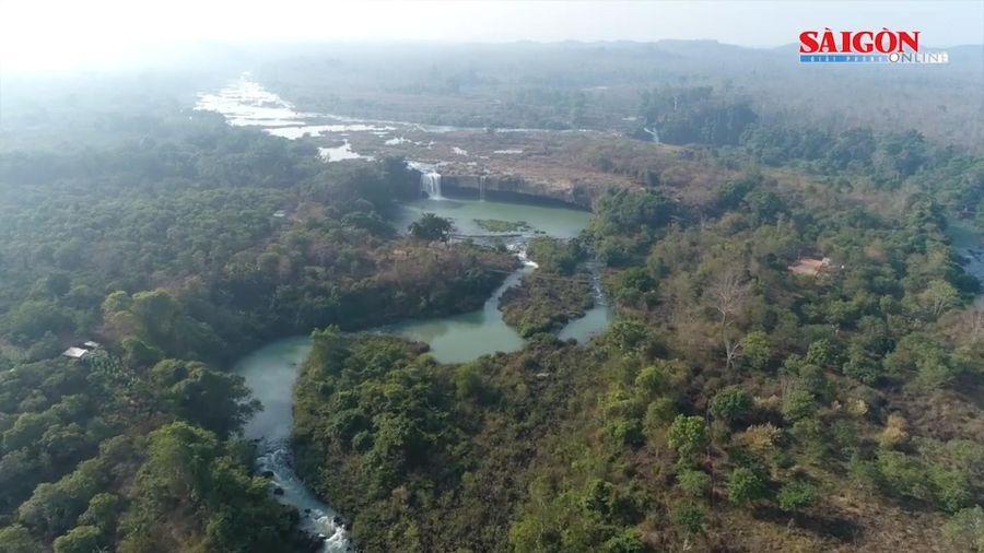 Việt Nam vào top 16 quốc gia có tính đa dạng sinh học cao trên thế giới