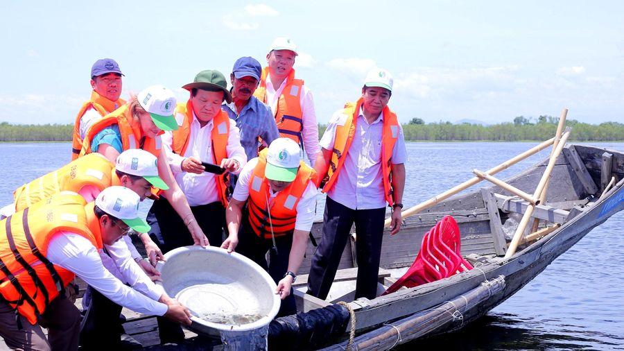Thành lập Khu bảo tồn thiên nhiên đất ngập nước Tam Giang-Cầu Hai