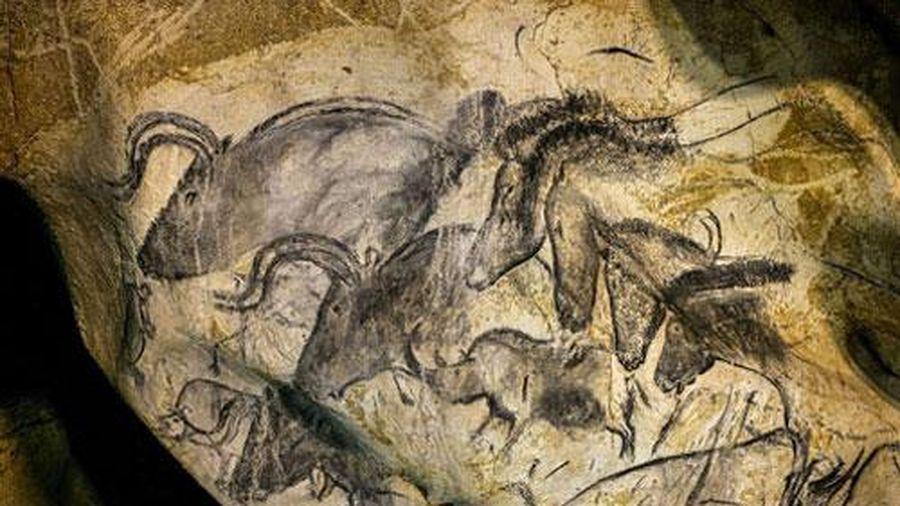 Bí ẩn bất ngờ về hang động cổ chứa nhiều bức tranh lạ