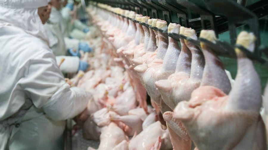 Trung Quốc tạm thời cấm nhập thịt từ Brazil