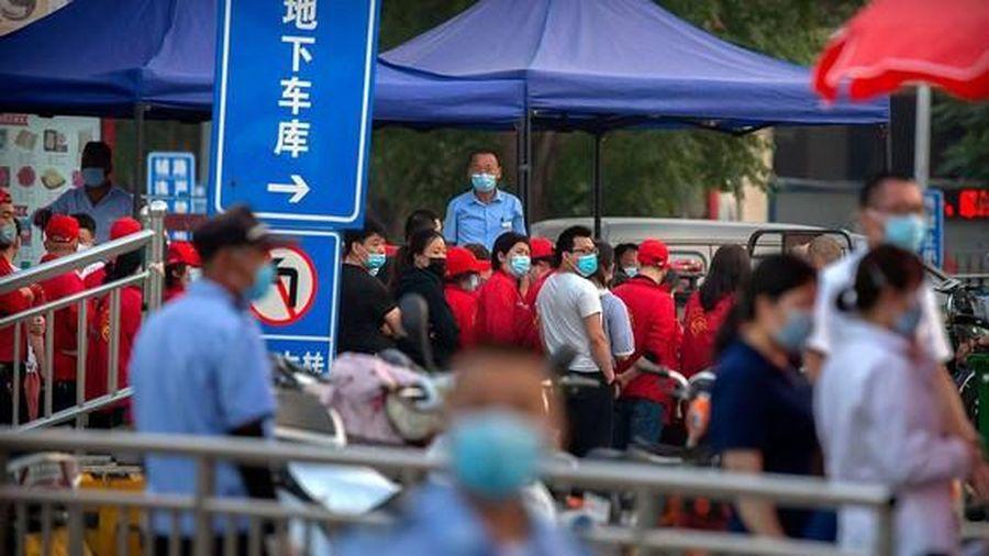 WHO gửi đội thứ hai vào Trung Quốc để tìm nguồn Covid-19 mới