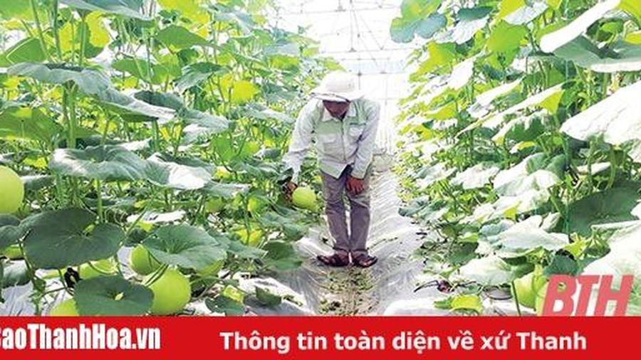 Hiệu quả từ chính sách phát triển các sản phẩm nông nghiệp chủ lực
