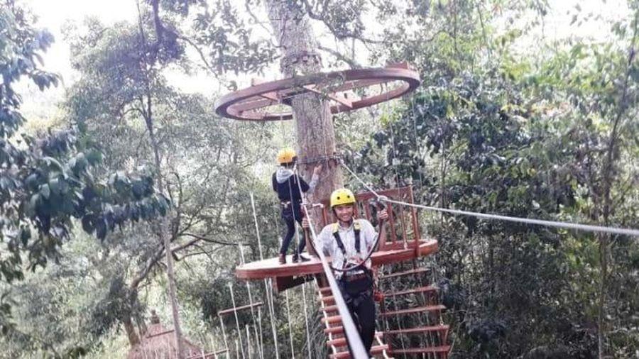 Công trình du lịch đu dây có xâm hại khu bảo tồn thiên nhiên Hòn Bà?
