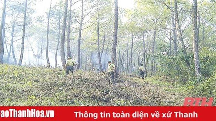 Tăng cường thực hiện các biện pháp cấp bách phòng cháy, chữa cháy rừng