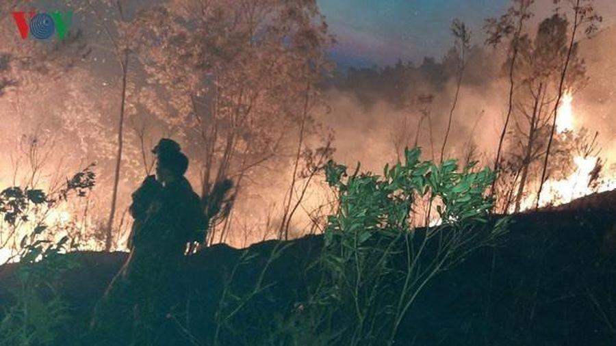 Bí thư Hà Tĩnh: 'Sớm điều tra làm rõ nguyên nhân vụ cháy rừng'