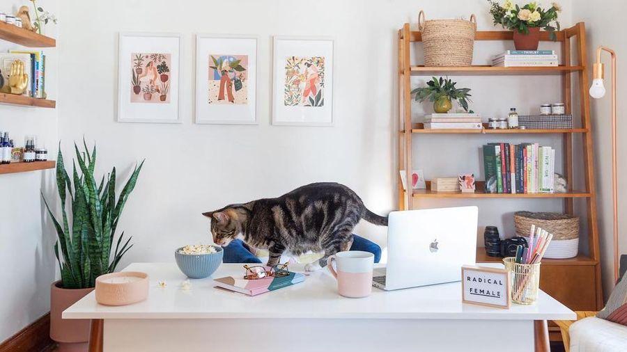 Home Office - trang trí góc làm việc ở nhà giờ cũng đáng đầu tư như xây văn phòng riêng