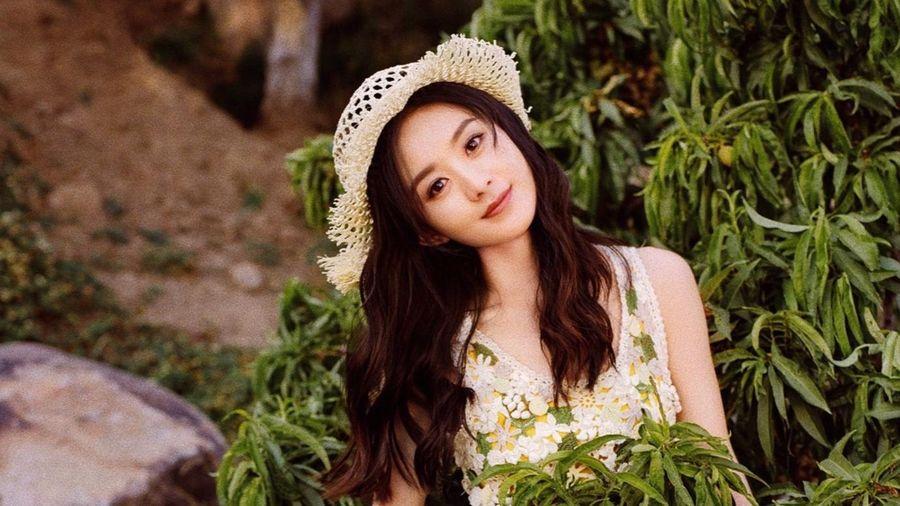 Triệu Lệ Dĩnh trông trẻ hơn tuổi khi diện đồ Dior hoa lá