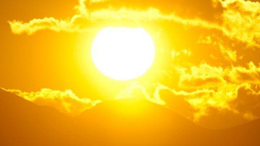 Những lời khuyên giúp bạn 'sống sót' qua ngày nắng gắt