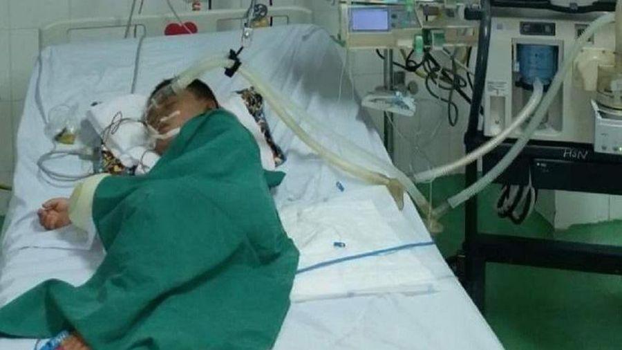 Bị ong vò vẽ đốt hơn 80 mũi, bé trai 4 tuổi phải lọc máu cấp cứu
