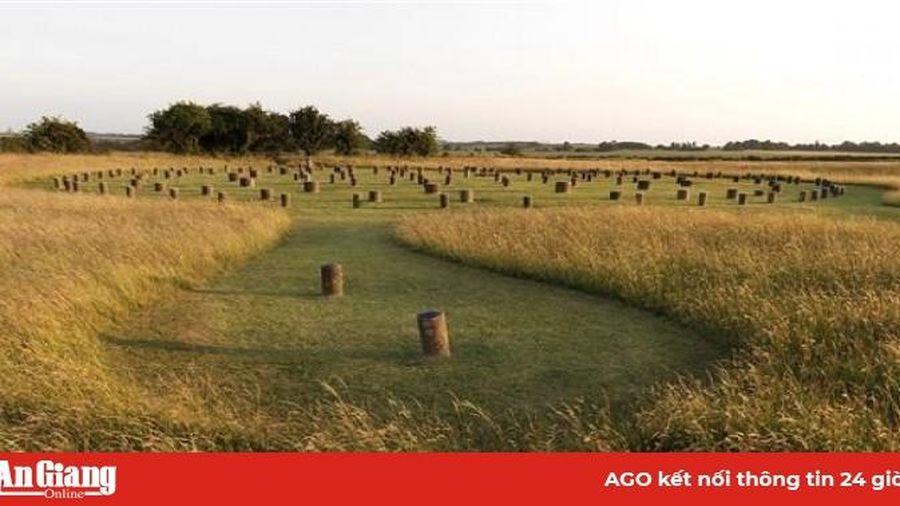 Phát hiện quần thể trụ đá khổng lồ gần di sản Stonehenge