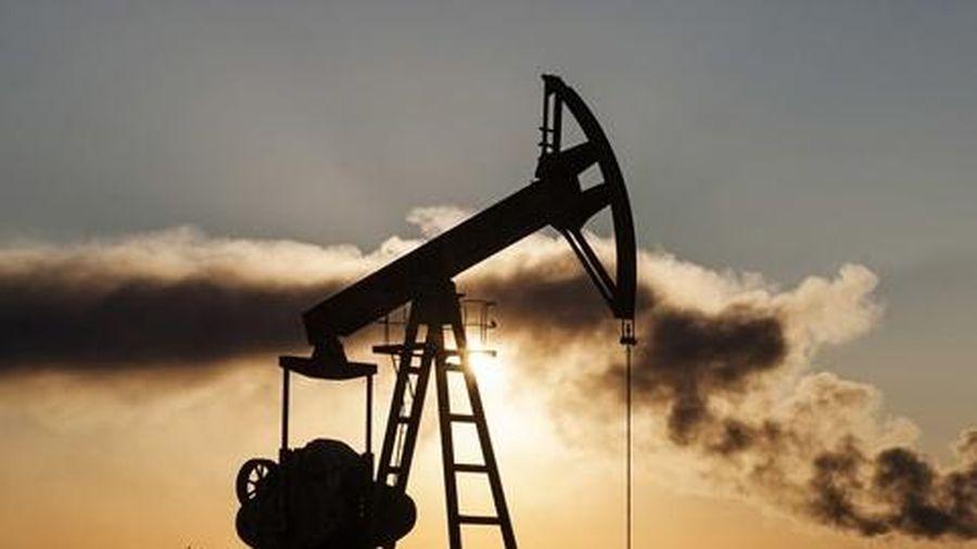 Triển vọng u ám vì Covid-19, khi nào nhu cầu dầu mỏ sẽ đạt đỉnh trở lại?