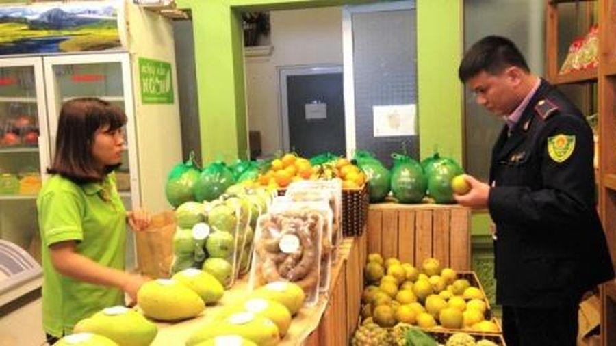 Người tiêu dùng đã quan tâm hơn đến sản phẩm trái cây an toàn, rõ nguồn gốc xuất xứ