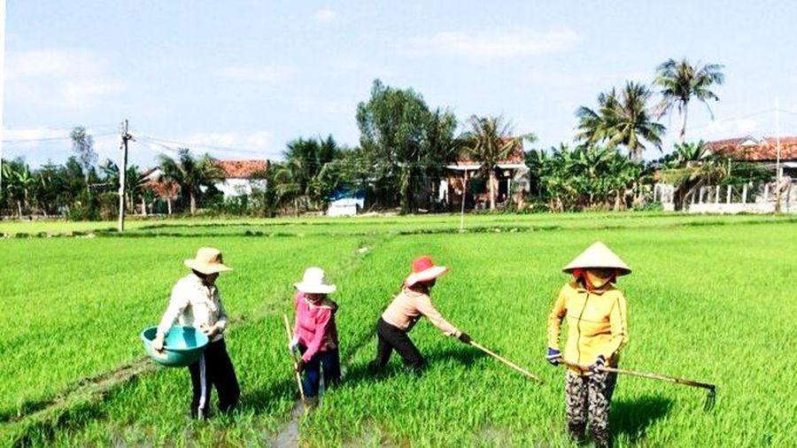 Phụ nữ chung tay xây dựng nông thôn mới