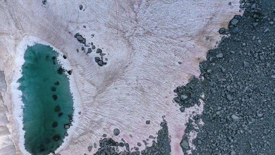 Kỳ lạ tuyết hồng bao phủ sông băng trên dãy Alps