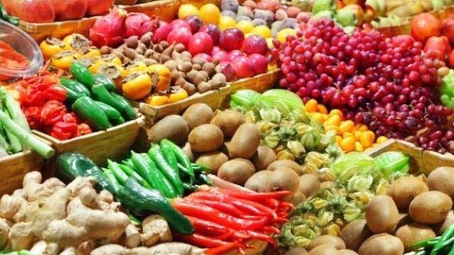 Xuất khẩu rau quả đạt 1,8 tỷ USD trong 6 tháng qua