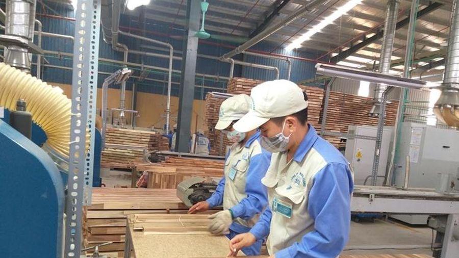 Cần hình thành và thực hiện các cơ chế giảm thiểu rủi ro nguồn cung gỗ dán