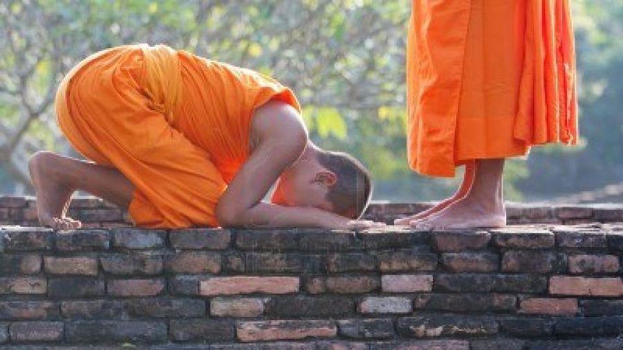Suy nghiệm lời Phật : Bảy pháp cung kính làm cho Chánh pháp tăng trưởng