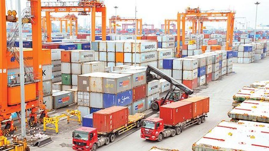Đang điều tra 1 doanh nghiệp tự phát hành C/O cho 33 doanh nghiệp xuất khẩu 600 tỷ đồng hàng hóa ra nước ngoài