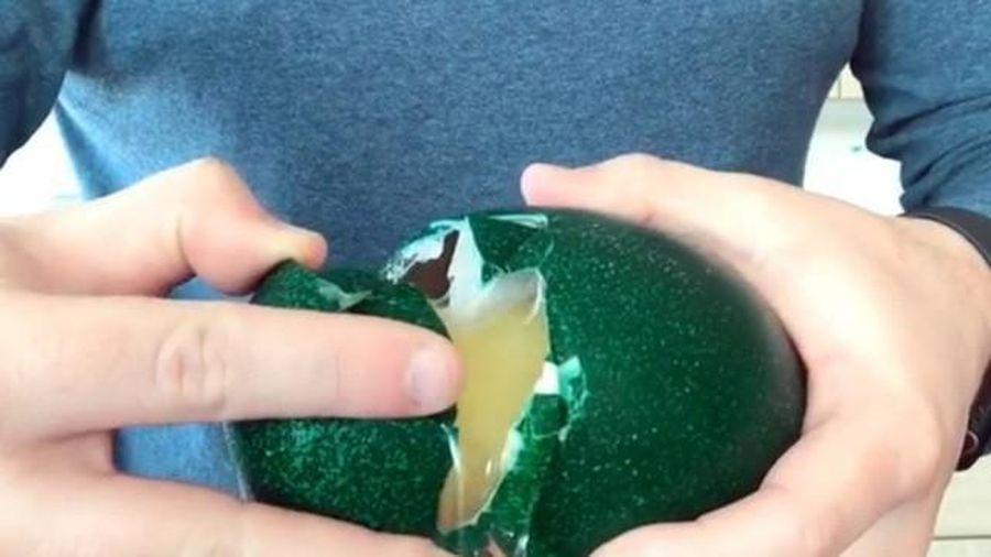 Hơn triệu đồng 1 quả trứng đà điểu xanh... có gì bổ béo?
